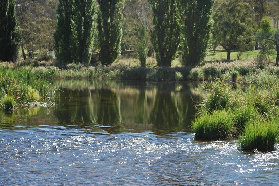 View From Cabin Picture Of Snowy River Cabins Dalgety Tripadvisor