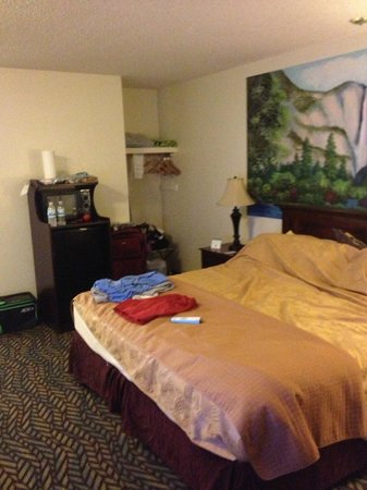 BEST WESTERN PLUS Yosemite Gateway Inn: king size room, wit fridge and microwave