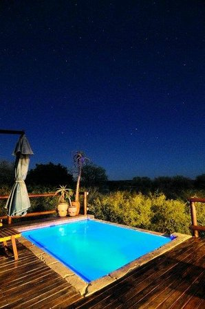 Marloth Park, Güney Afrika: Swimming pool in the moonlight