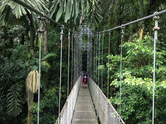 The Springs Resort and Spa at Arenal: Hanging Bridges