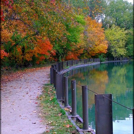 Yorkville, IL: Fall colors at Silver Springs Park