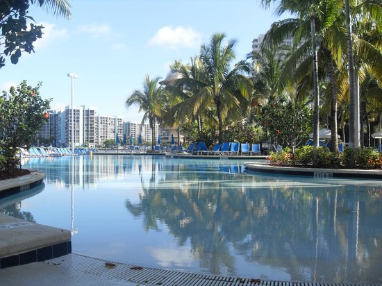 Crowne Plaza Hollywood Beach: borde infinito