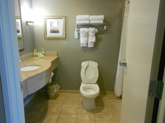 Holiday Inn Express Hotel & Suites Mt Pleasant-Charleston: Bathroom great shower