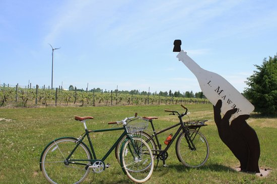 Suttons Bay, MI: Visit local Wineries on a Bicycle Wine Tour!