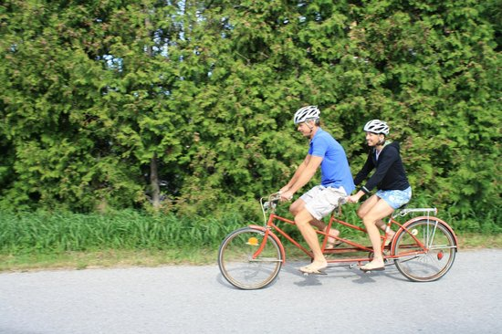 Suttons Bay, MI: We rent out all types of bikes! A tandem is a great option for 2 to share!