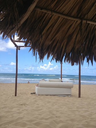 Excellence Punta Cana: Beach with beds