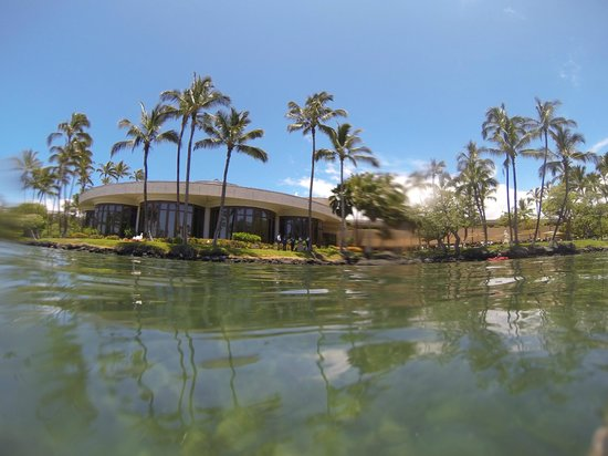 Hilton Waikoloa Village: View from the Lagoon