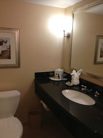 Baltimore Marriott Waterfront: Room 2717 Granite Top Sink