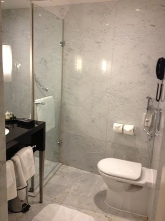 Sheraton Park Tower: bathroom