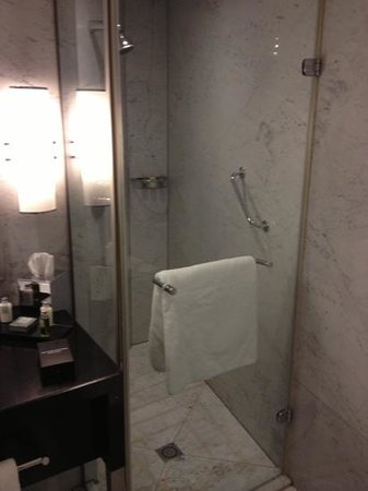 Sheraton Park Tower: shower