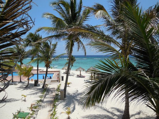 Oasis Tulum: View From mOur Room