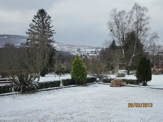 Laragh, Ireland: Snowy view from front of Lodge.