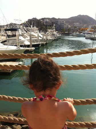 Hacienda del Mar Vacation Club: Cabo is worth it!
