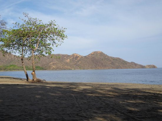 Hotel Riu Guanacaste: View from the beach