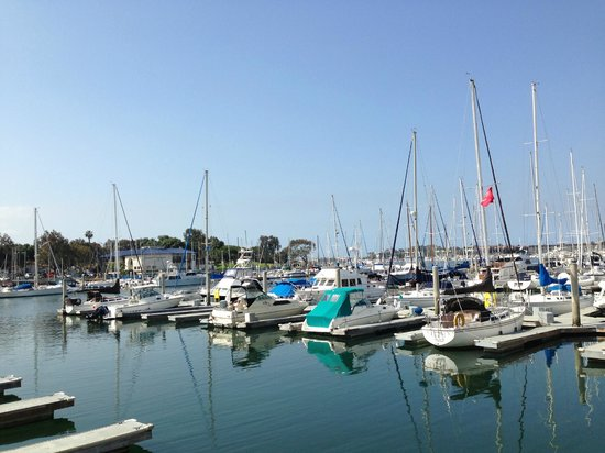 Marina del Rey, Californie : View from hotel grounds