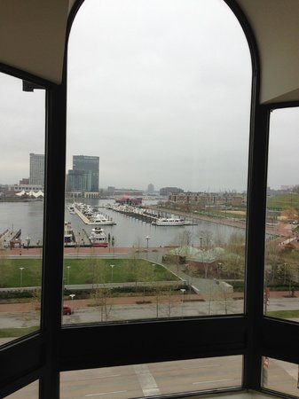 Royal Sonesta Harbor Court Baltimore : Beautiful view from our room!