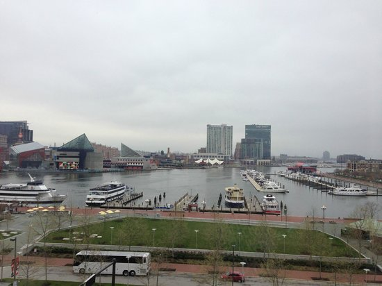 Royal Sonesta Harbor Court Baltimore : Inner Harbor -taken from our hotel room