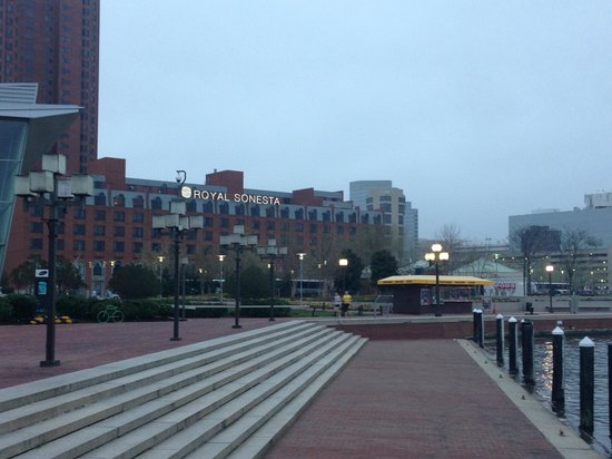 Royal Sonesta Harbor Court Baltimore : view of the hotel from the walkway along the inner harbor