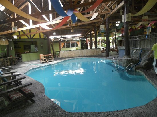 Bohol Bee Farm: Indoor swimming pool