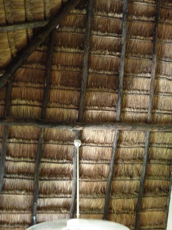 Allegro Playacar: Thatched roof with small gaps.