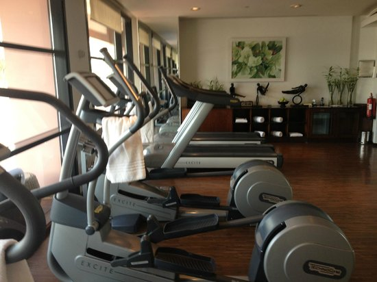 Sofitel Cairo El Gezirah: The small gym