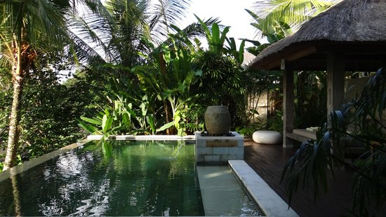 The Purist Villas and Spa: Hill Villa Pool