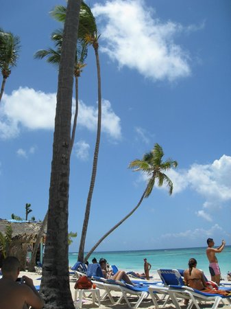 Barcelo Dominican Beach 사진