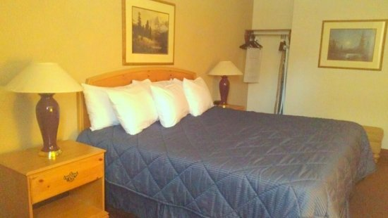 Pagosa Springs, CO: King Standard Room