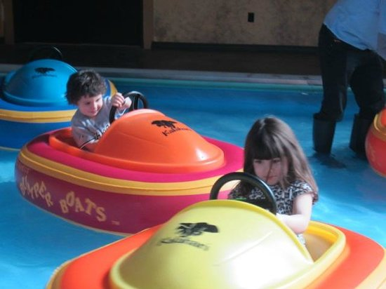 Kalahari Resorts & Conventions: Toddler Bumper boats