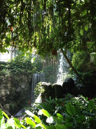 Grand Hyatt Singapore: view of waterfall from lift lobby