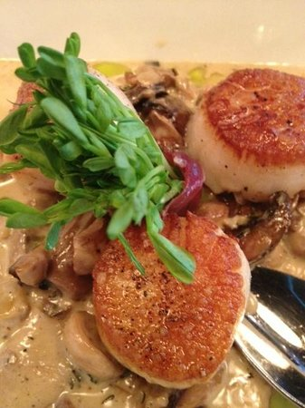 West Hartford, CT: Seared Scallops with a porcini cream