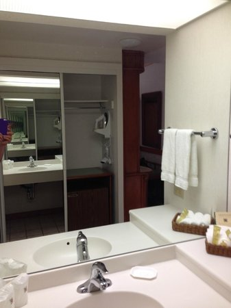 Ka'anapali Beach Hotel: Mini-fridge was in the closet.