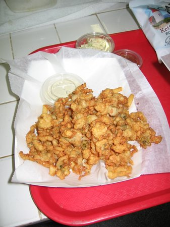 Jacksonville Beach, FL: Full Belly Ipswich Full Belly Fried Clams with homemade Cole Slaw and Tartar Sauce