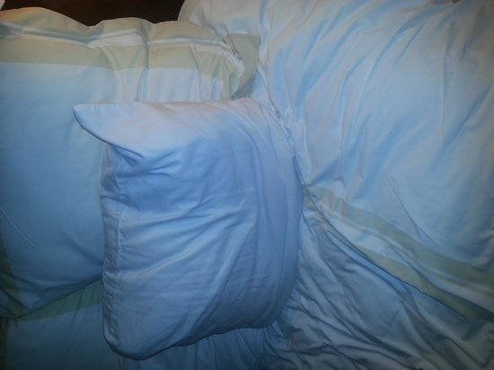 Fort Wayne, IN: bed linens and pillows were really comfy