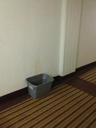 Days Inn Neptune Beach: Guest in the middle of the night getting sick in hallway