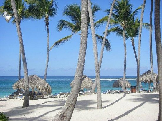 Grand Paradise Bavaro: Beach from restaurant
