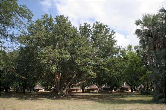 Letaba Rest Camp: Letaba Rondavels