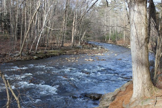 Northampton, MA: Lovely river that runs along the border of the park