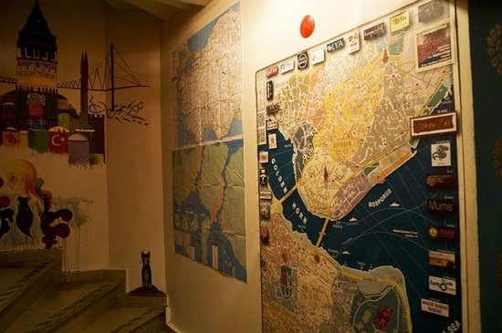 Stray Cat Hostel: City Maps