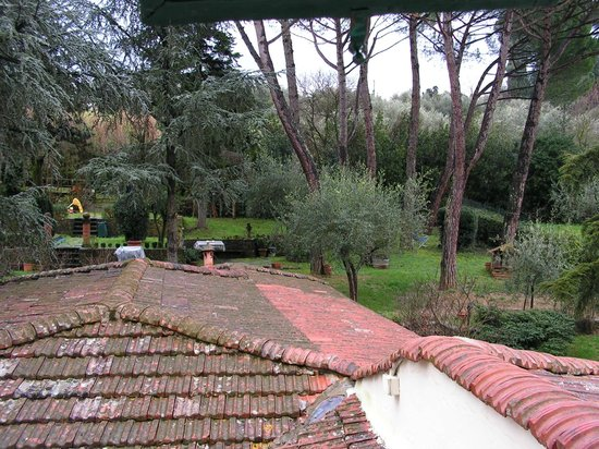 Fiorenza B&B: the garden from our room