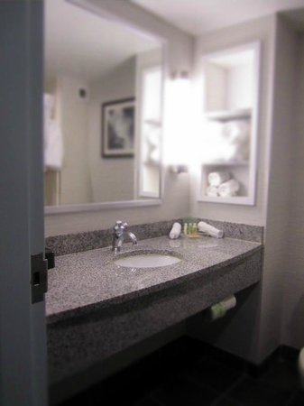 Holiday Inn Hotel & Suites, Williamsburg-Historic Gateway: Spotless bathroom