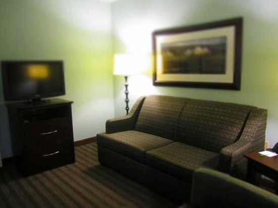 Holiday Inn Hotel & Suites, Williamsburg-Historic Gateway: Living room