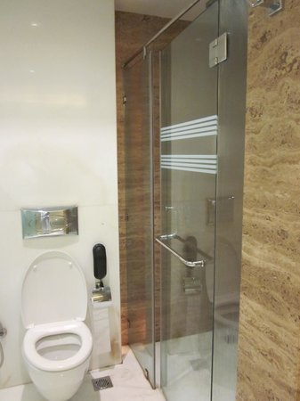 Residency Hotel Andheri: Shower