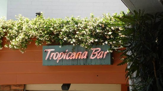Hollywood Roosevelt Hotel - A Thompson Hotel : Tropicana Bar