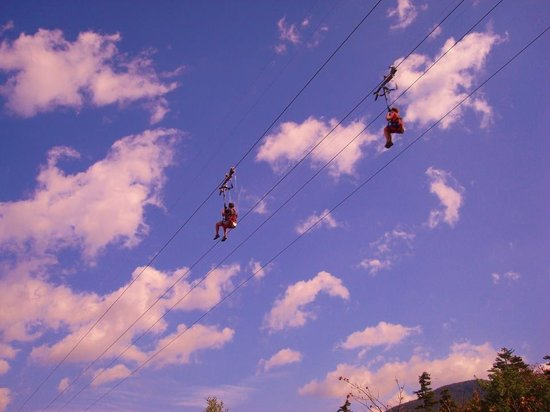 Jackson, NH : The Zip Line at Wildcat