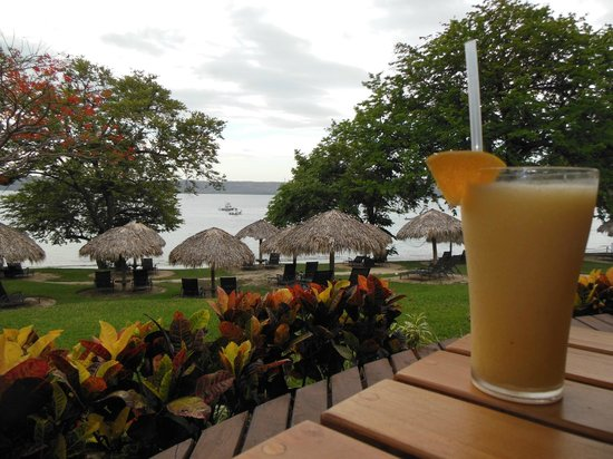 Hilton Papagayo Costa Rica Resort & Spa: Howler monkey cocktail