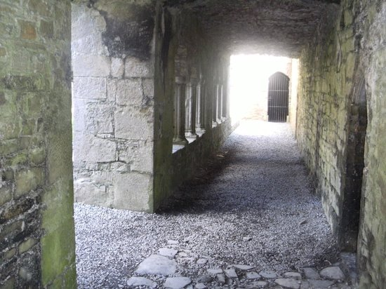 County Dublin, Irlanda: A view through the Cloister in BECTIVE Abbey CO.MEATH