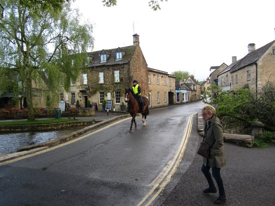 Manor Close B & B: Burton is Horse Country - on way to dinner