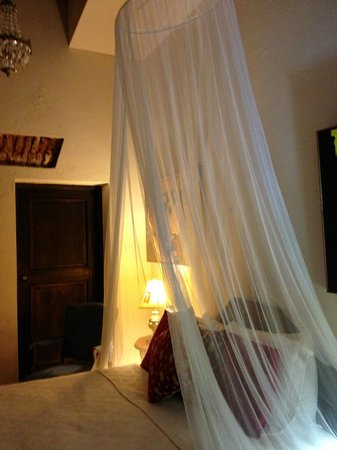 Villa Herencia: Mosquito Net hangs above bed for protection