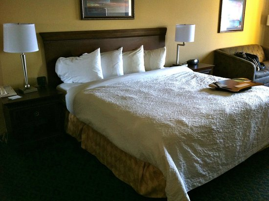King Bed - Picture of Hampton Inn & Suites St. Augustine